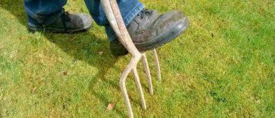 Få styr på græsplænen i maj måned