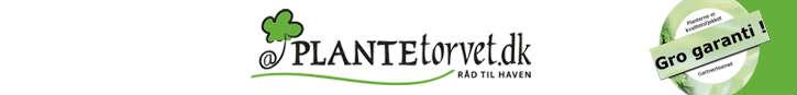 køb planter online ved Plantetorvet