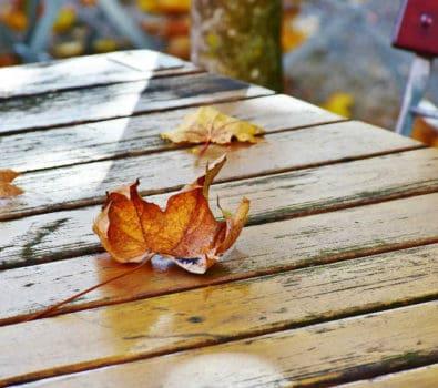 Gør haven vinterklar med det rigtige udstyr og beklædning