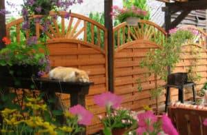 tips til overdækket terrasse i haven