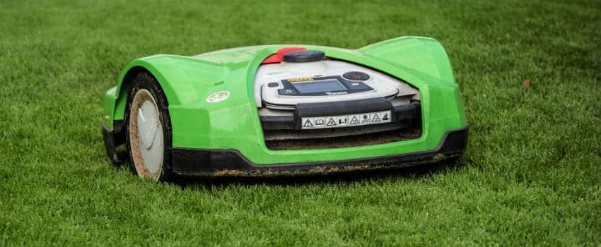 brug det rigtige gødning til græsplænen