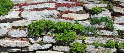 Byg en støttemur i haven med de rigtige tips