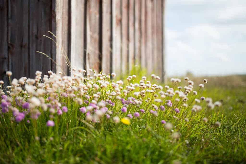 Byg-selv projekter til haven – Tips til overvejelser du skal gøre dig