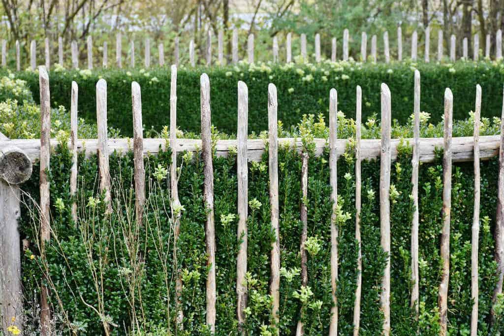 Publish april: Haverenovering - Gode råd til renovering/ombygning af haven