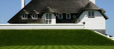 Gødning af græsplæne guide