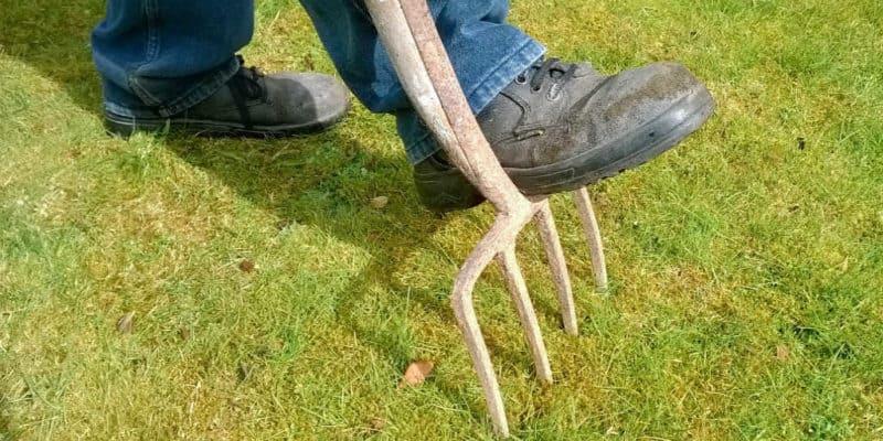 hvordan fjerner man mos i græsplænen
