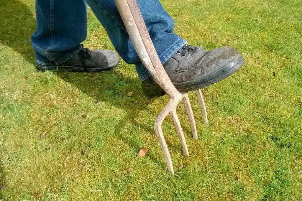 Hvordan fjerner du mos i græsplænen til den forårsklare have?