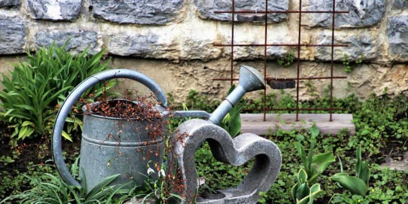kloakering i det åbne land med minirenseanlæg