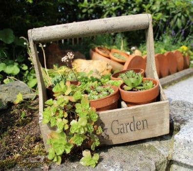 Rensning af fliser udendørs – Tips til hvordan & hvad der virker