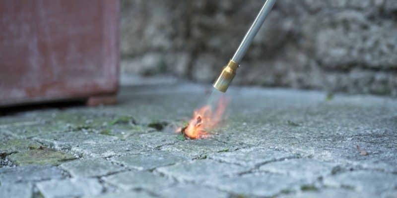 Bedste ukrudtsbrænder test